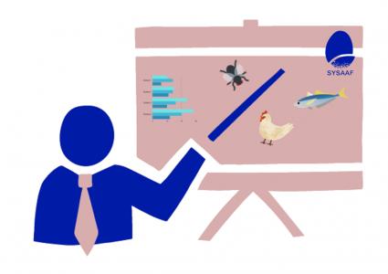 Service de formation professionnelle et enseignements dispensés