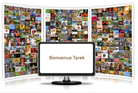 Bienvenue Tarek