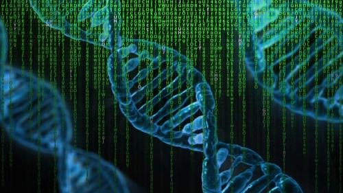 Offre d'emploi Ingénieur R&D en sélection phénomique
