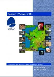 RA SYSAAF 2013