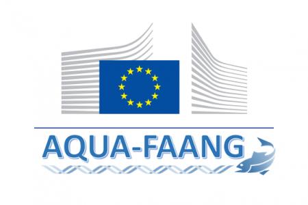 Aquafaang