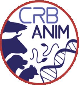 CRB Anim
