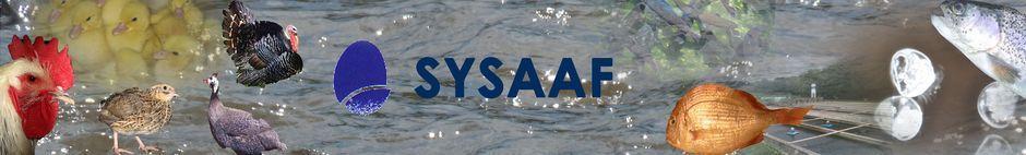 Bienvenue sur le site du SYSAAF